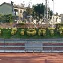 15° Consalvo Romoli